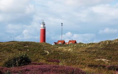 Case Study: Gemeente Texel